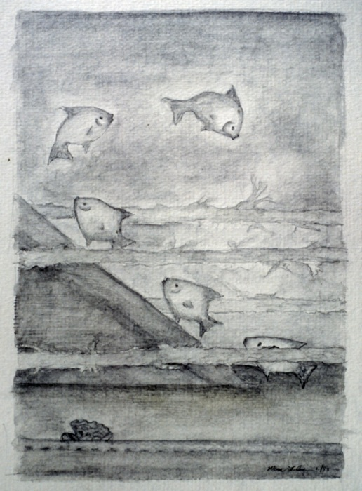 """Fish play • watersoluble pencil • 8""""x10"""""""