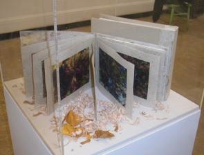 Wood Poem II - Artist's book & Digital Prints