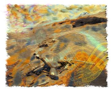 12: Immersion 1 Sigatoka Sand Dunes
