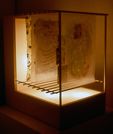 Wood Poem I • Light Box and Layers