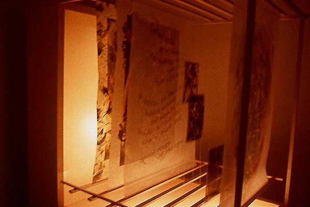 Wood Poem I • Light Box and Layers