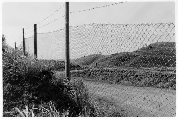 Fence Line, Momi, Viti Levu, Fiji