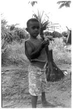Fiji Boy(Fiji)